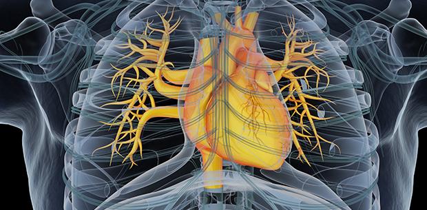 ICT als geneeskunde
