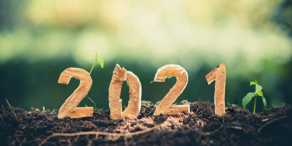 2021, hopelijk terug naar normaal en dan?